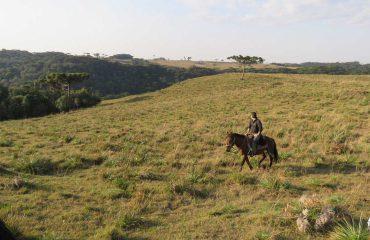 TOP TRIP ADVENTURE | FERIADAO NA FAZENDA